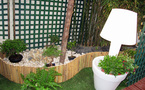 New in the Garden
